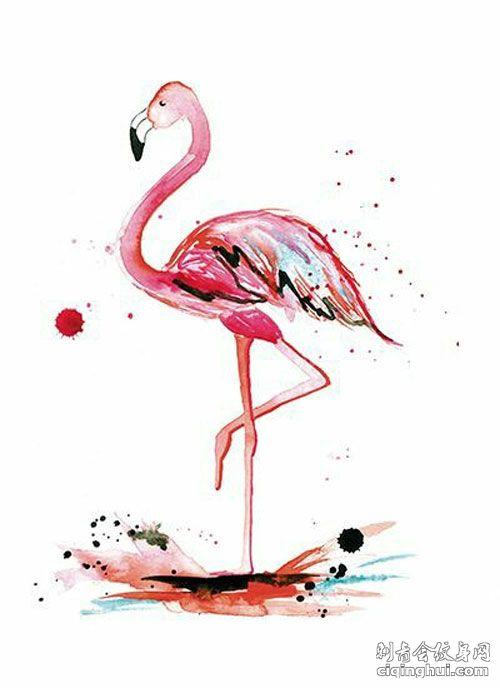 水彩火烈鸟纹身手稿图片