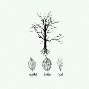 小清新树叶树枝树枝纹身手稿图片