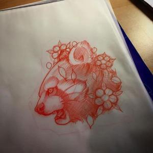 素描浣熊纹身手稿图片
