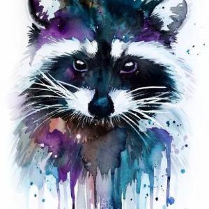 水彩浣熊纹身手稿图片