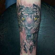 手臂白虎纹身图案