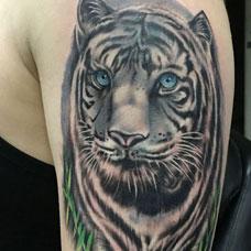 大臂个性白虎纹身图案