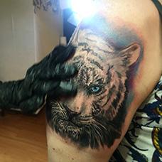 男士大臂白虎纹身图案