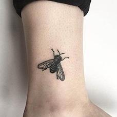 脚踝黑色苍蝇纹身图片