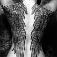背部黑灰色翅膀个性纹身
