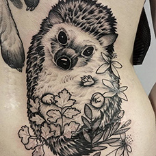 女生腰部刺猬纹身图片