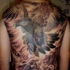 传统满背大鹏鸟纹身图案