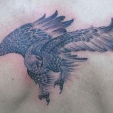 背部猎食的大鹏鸟纹身