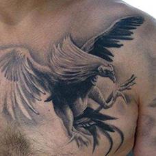 胸前大鹏鸟纹身图片