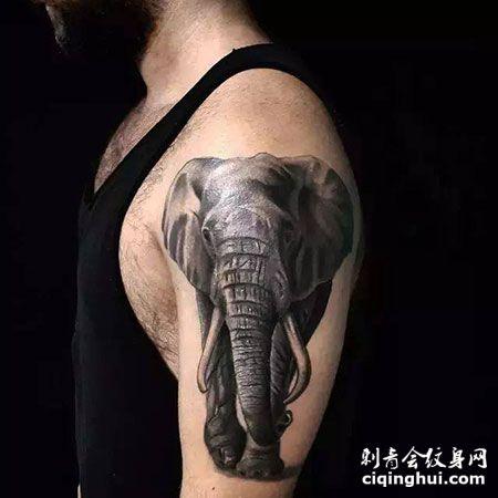 写实风泰国大象帅气纹身