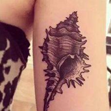 手臂个性海螺纹身图片