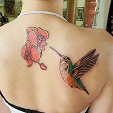 美女背部蝴蝶兰纹身图片
