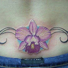 腹部蝴蝶兰纹身图片