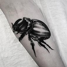 手臂黑色甲虫纹身图片