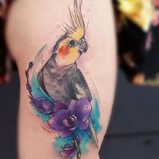 大臂泼墨鹦鹉与君子兰图案纹身图片