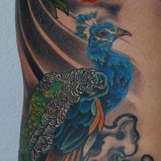 侧腰蓝孔雀纹身图案