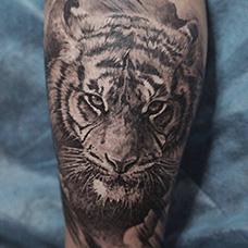 小腿写实老虎纹身图案