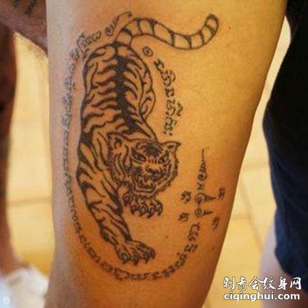 泰国点刺霸气下山虎手臂刺青纹身