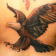 腰部飞翔的老鹰纹身图案
