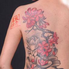 美女背部樱花纹身图片