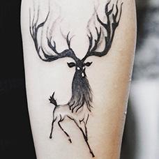 手臂抽象的马鹿纹身图片