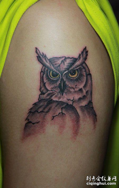 手臂上的猫头鹰纹身图案