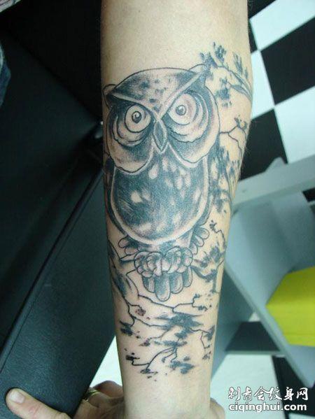 手臂个性猫头鹰纹身图案