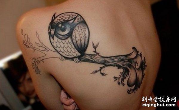 背部可爱的猫头鹰纹身图案