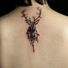 背部性感的麋鹿纹身图案
