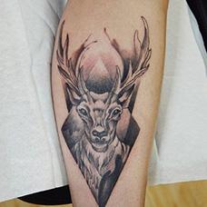 手臂麋鹿纹身图片