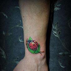 手腕七星瓢虫树叶纹身图片