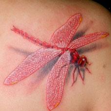 肩部红色蜻蜓纹身图案