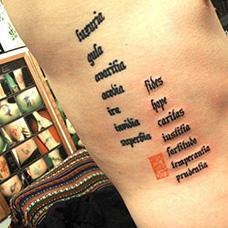 侧腰七宗罪纹身图案