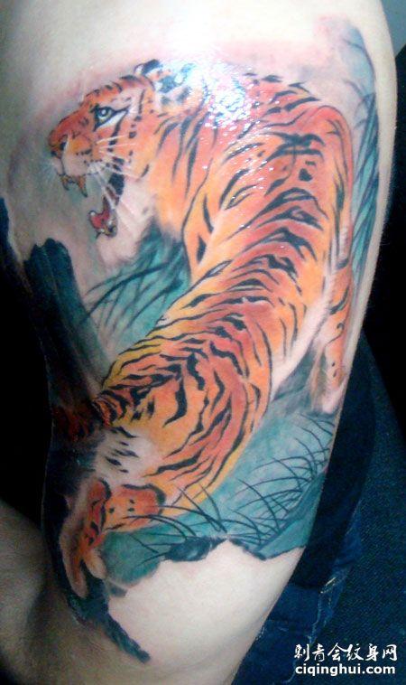 大臂彩色上山虎纹身图案