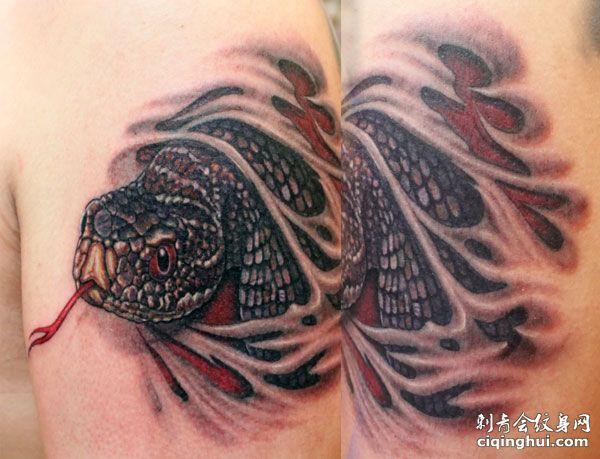 您可能还会喜欢大臂彩色蛇纹身图案或者满背蛇牡丹纹身图案.