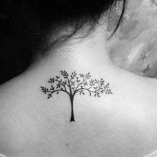 美女背部小树纹身图片