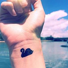 手腕黑天鹅纹身图片