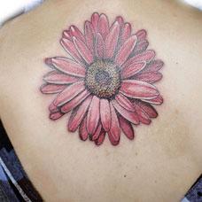 背部雏菊纹身图片