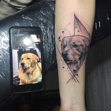 小臂上逼真的金毛狗写实纹身