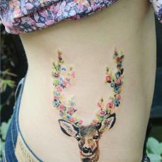 女生侧腰可爱母鹿图案纹身