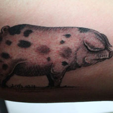 大臂花斑小猪纹身图案