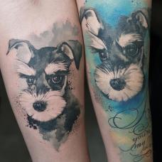 情侣手臂雪纳瑞纹身图案
