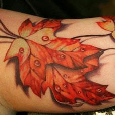 手臂飘落的叶子纹身图片