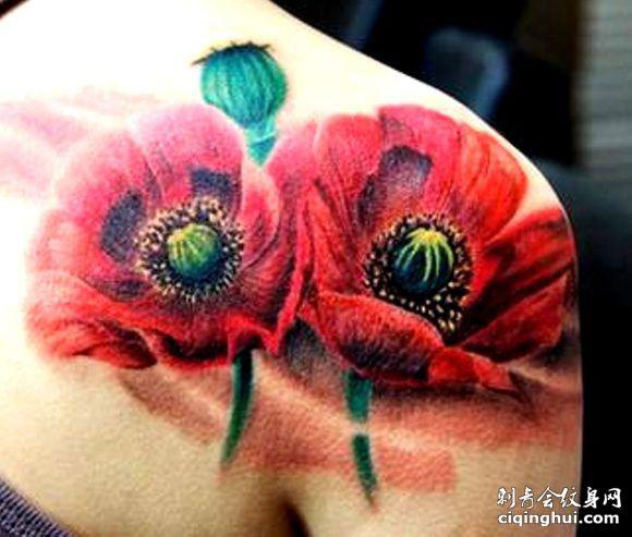 肩部彩色罂粟花纹身图片