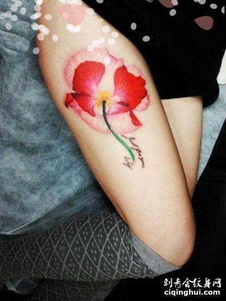大腿性感罂粟花纹身图案