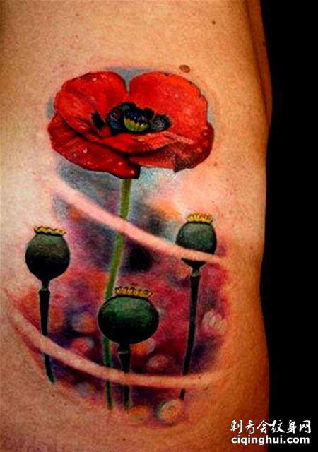 手臂罂粟花纹身图案