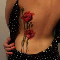 腰部性感罂粟花纹身图片