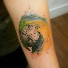 手臂泼墨鹦鹉纹身图片