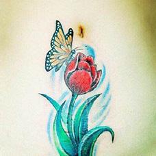 腹部性感的郁金香纹身图片