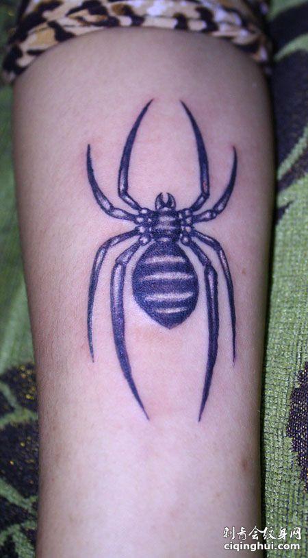 手臂好看的蜘蛛纹身图案